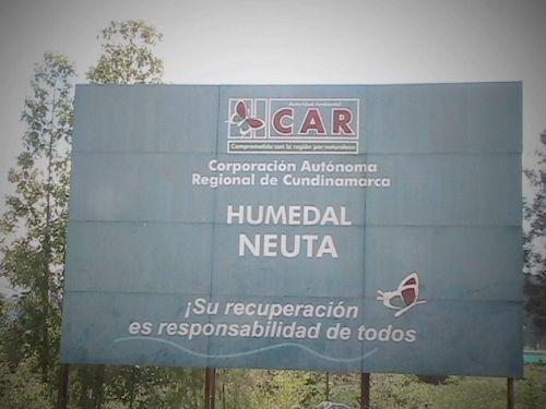 Fotolog de investigacion: Humedal,ambiente,proteccion,fauna,naturaleza